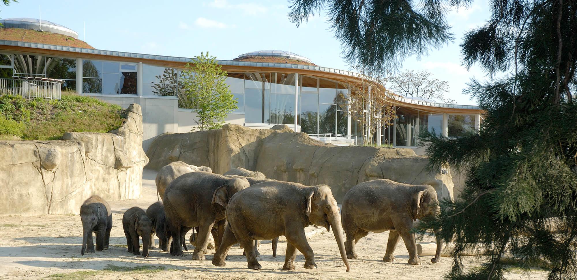 Zoo Event Köln